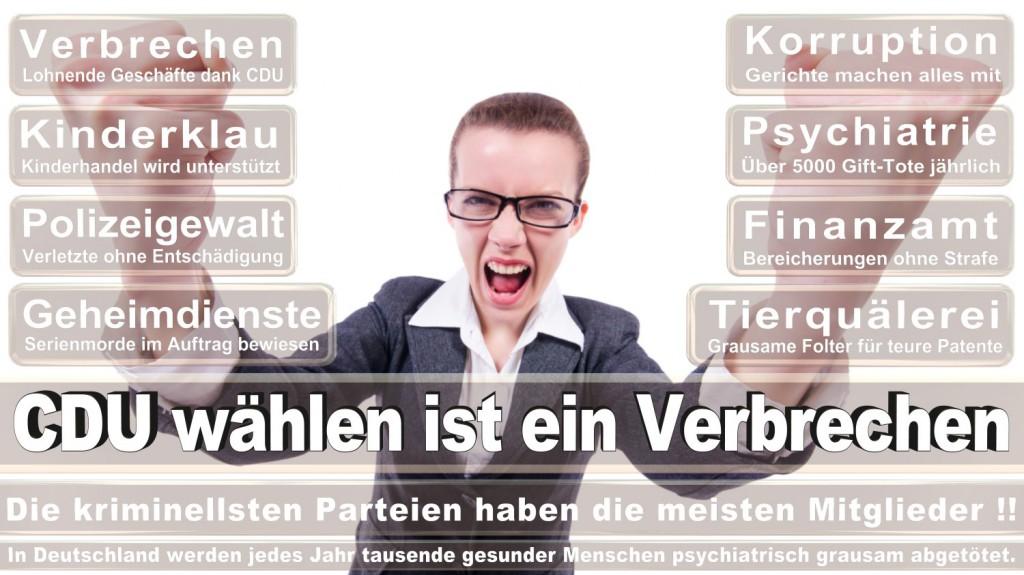 Landtagswahl-2016-CDU (210)