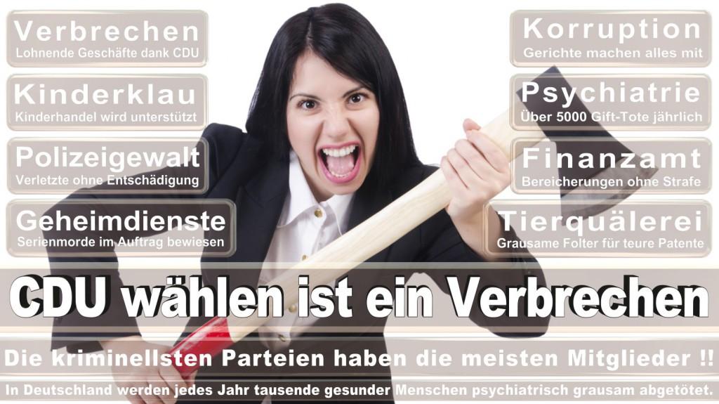 Landtagswahl-2016-CDU (211)