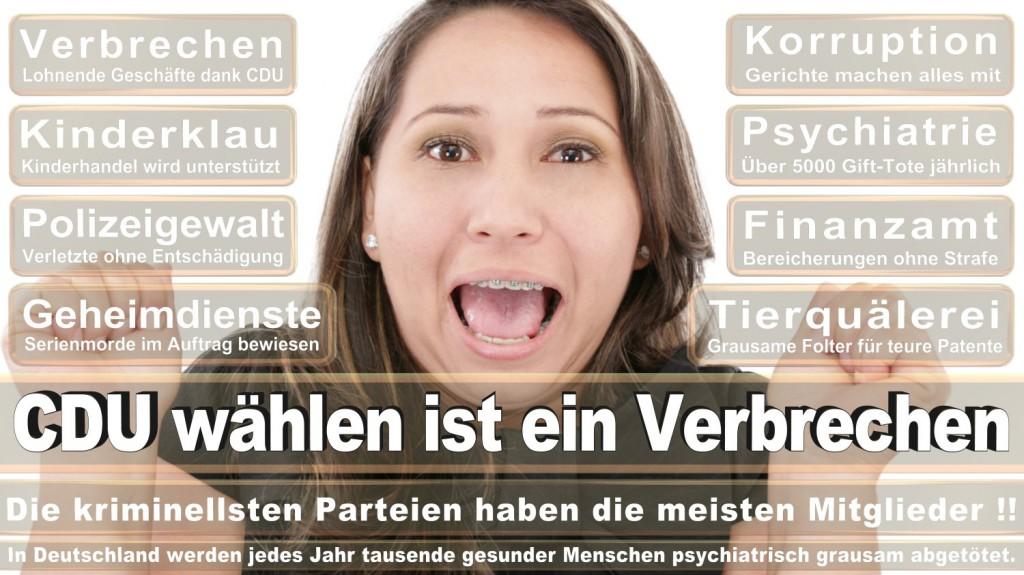 Landtagswahl-2016-CDU (215)