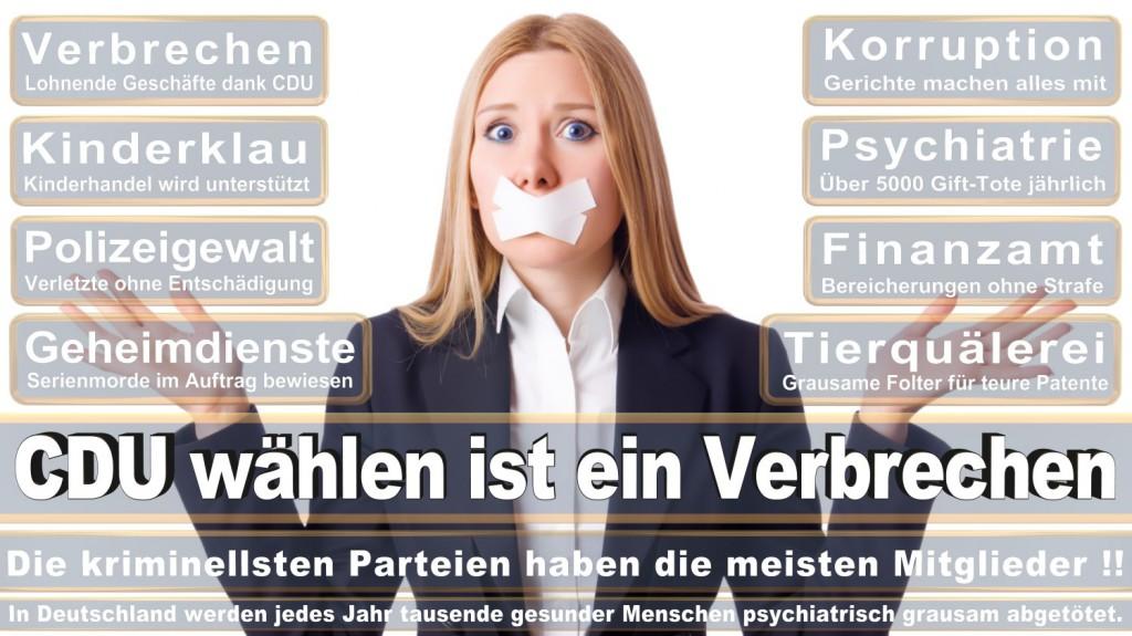 Landtagswahl-2016-CDU (219)
