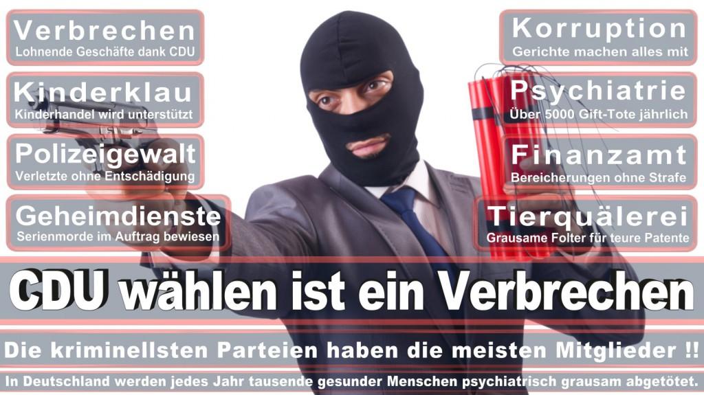 Landtagswahl-2016-CDU (221)