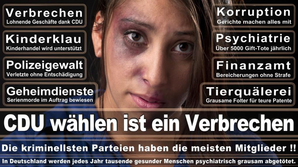 Landtagswahl-2016-CDU (222)