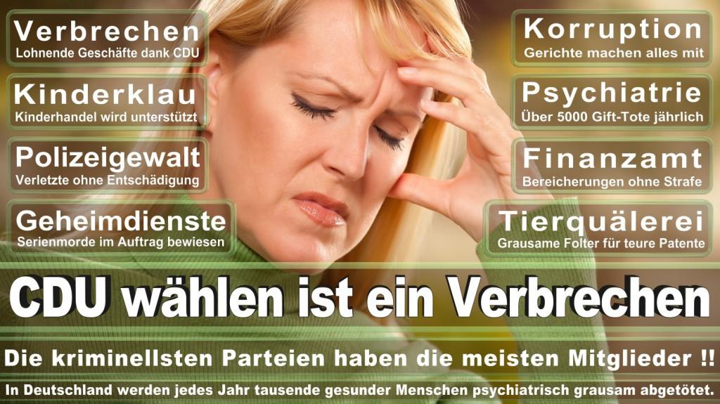 Landtagswahl-2016-CDU (223)