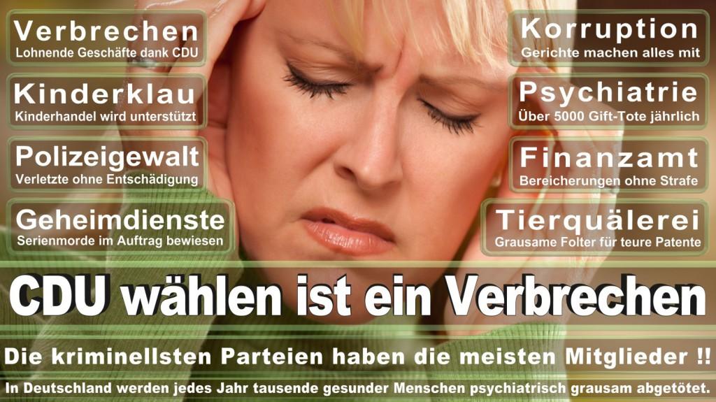 Landtagswahl-2016-CDU (225)