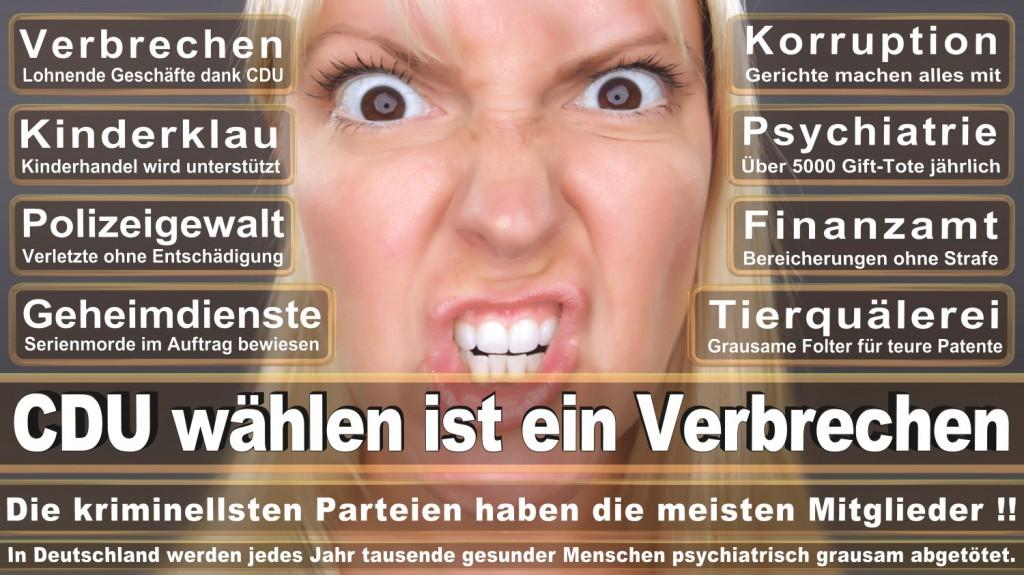 Landtagswahl-2016-CDU (227)