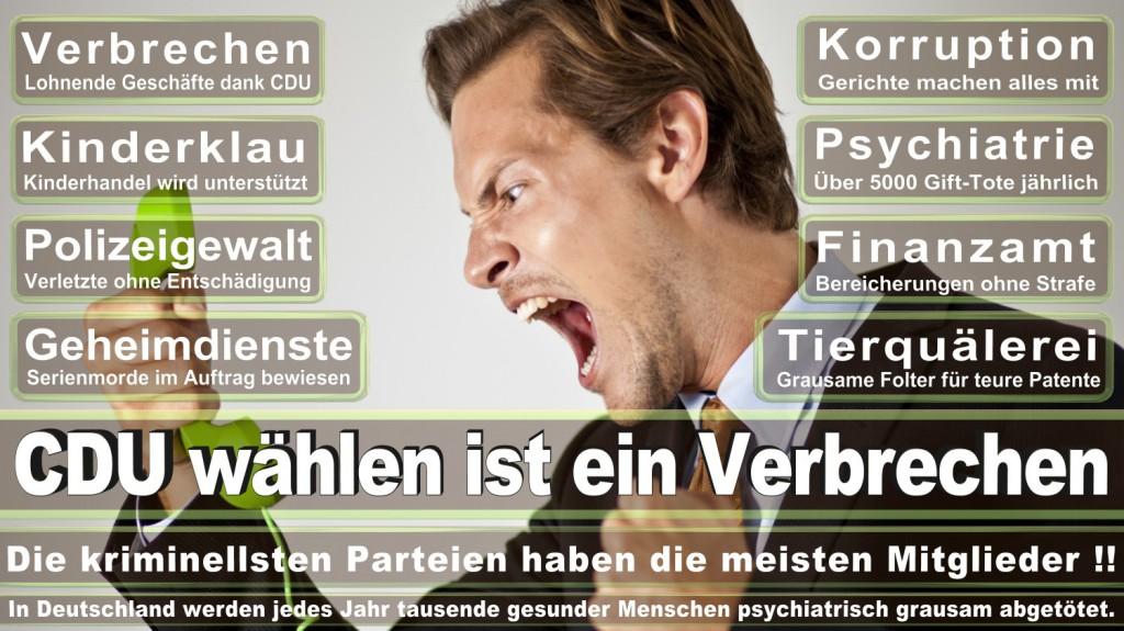 Landtagswahl-2016-CDU (228)