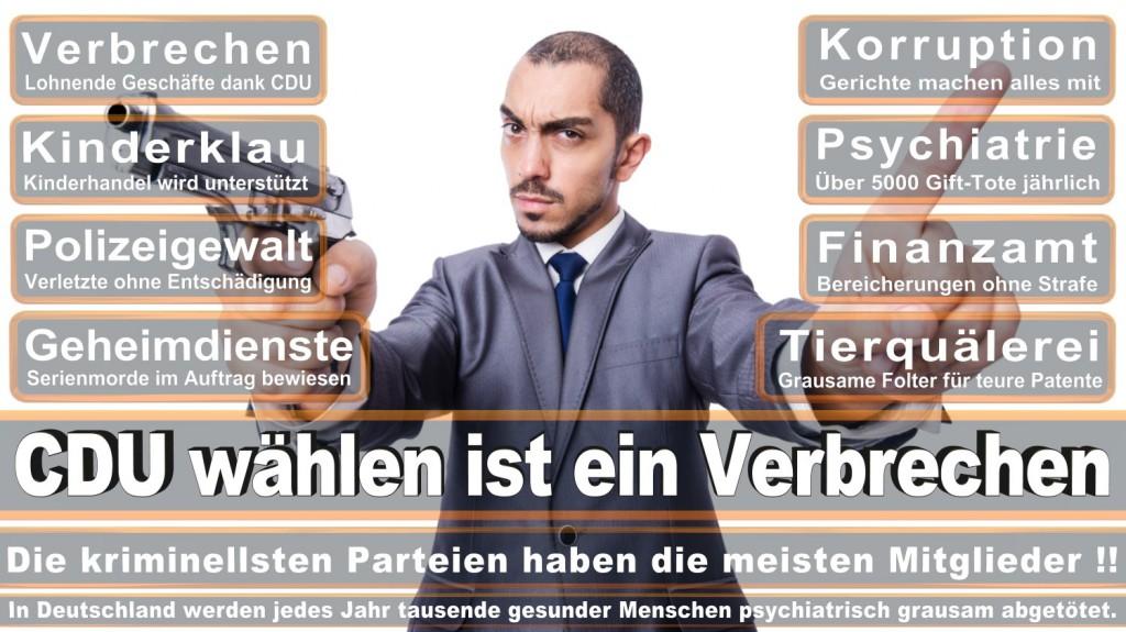 Landtagswahl-2016-CDU (230)