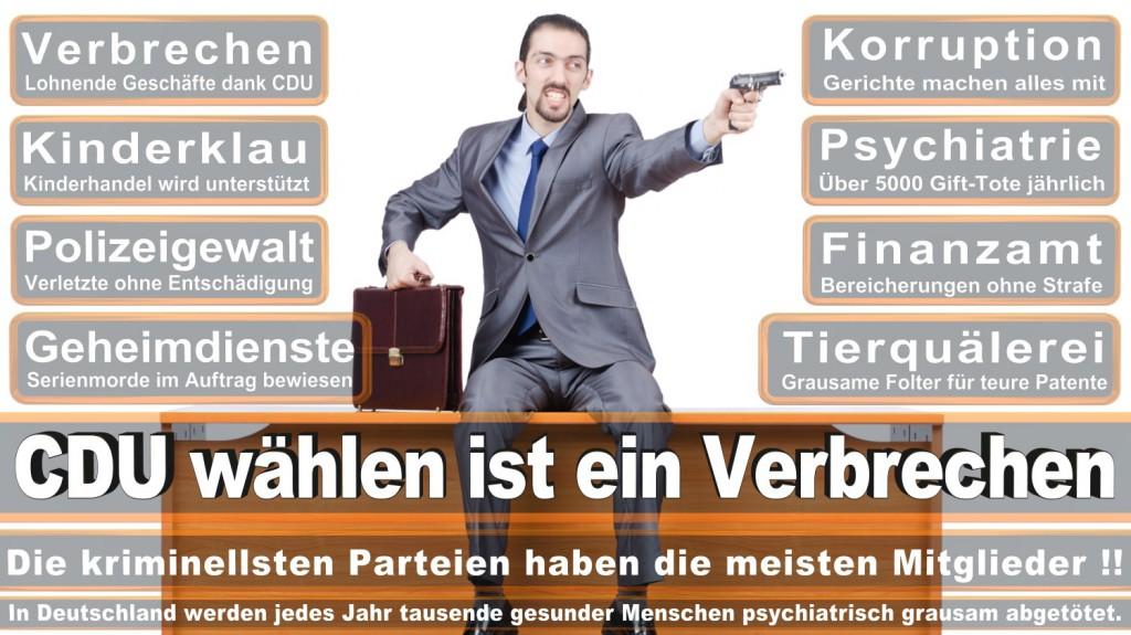 Landtagswahl-2016-CDU (231)