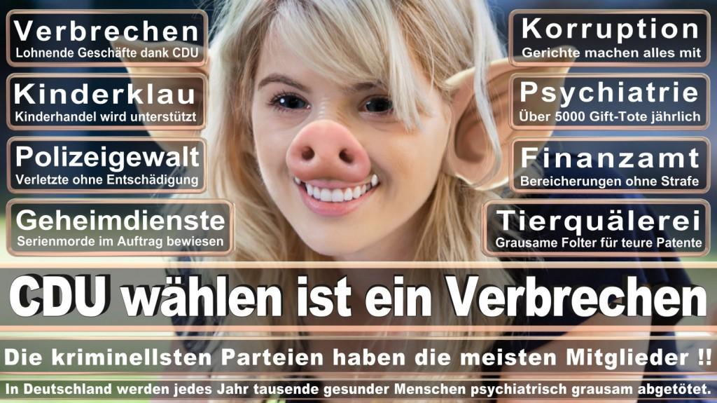 Landtagswahl-2016-CDU (240)