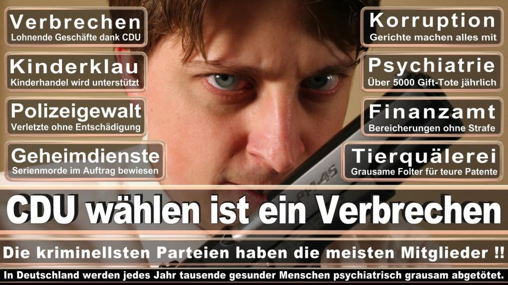 Landtagswahl-2016-CDU (242)