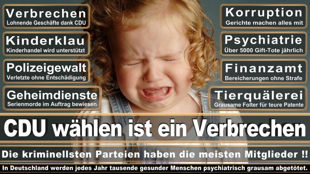 Landtagswahl-2016-CDU (245)