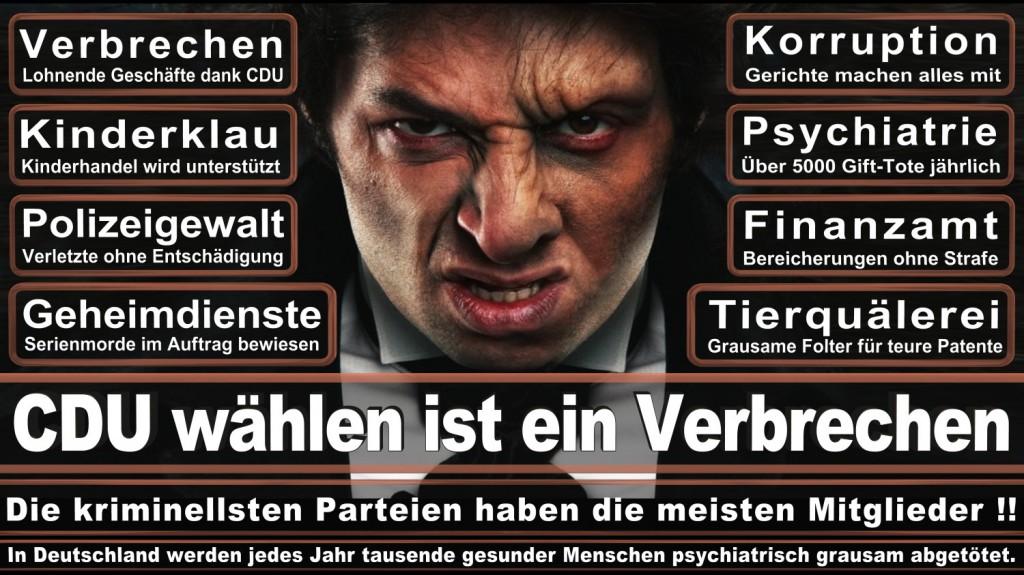Landtagswahl-2016-CDU (247)