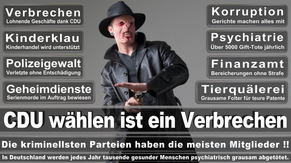Landtagswahl-2016-CDU (248)