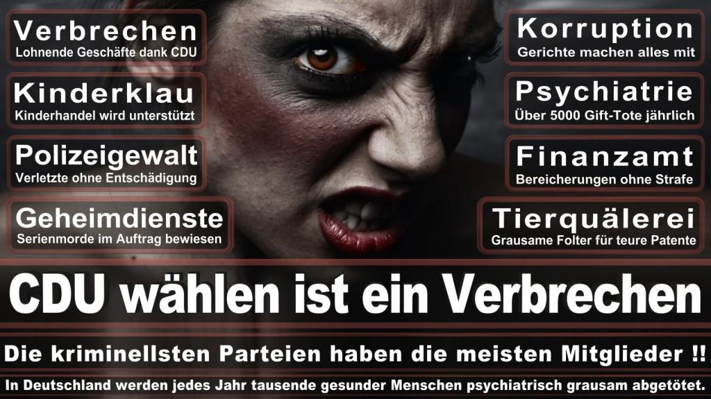 Landtagswahl-2016-CDU (253)