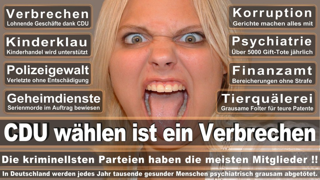 Landtagswahl-2016-CDU (254)