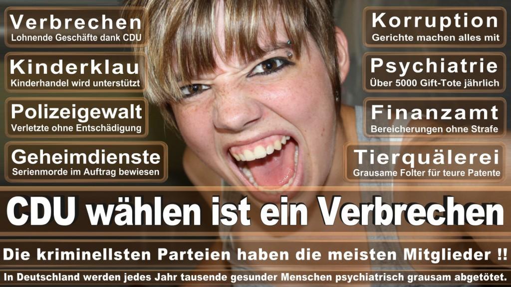Landtagswahl-2016-CDU (255)