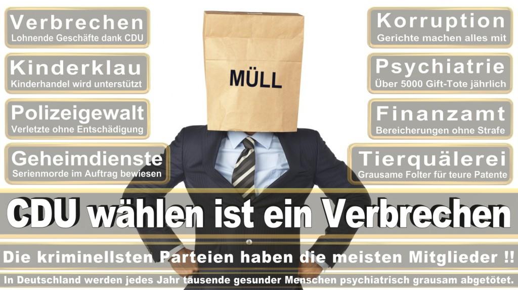 Landtagswahl-2016-CDU (261)