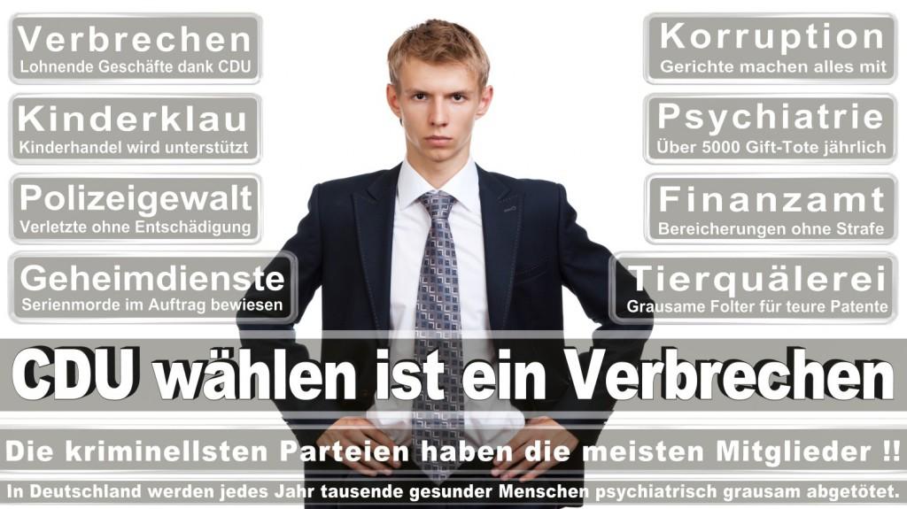 Landtagswahl-2016-CDU (262)