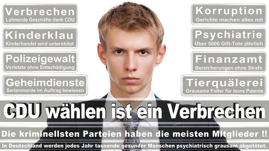 Landtagswahl-2016-CDU (263)