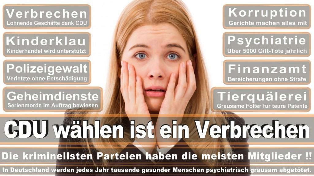 Landtagswahl-2016-CDU (266)
