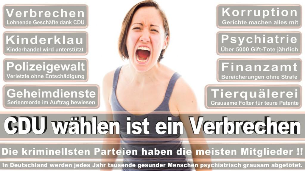 Landtagswahl-2016-CDU (267)