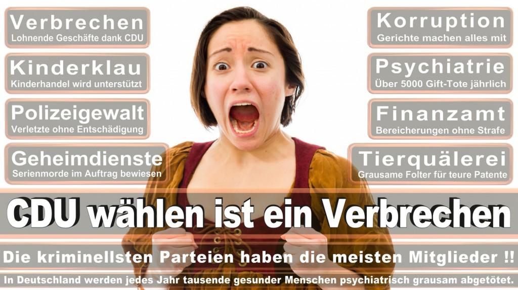 Landtagswahl-2016-CDU (269)