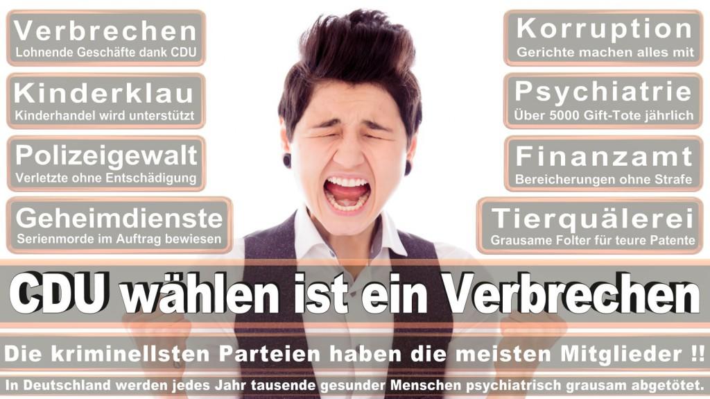 Landtagswahl-2016-CDU (271)