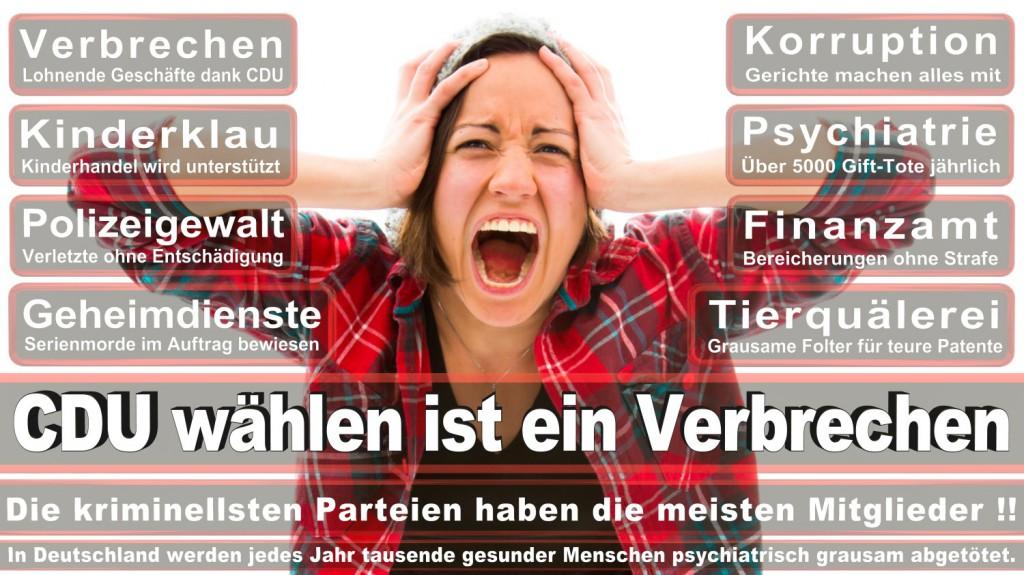 Landtagswahl-2016-CDU (272)