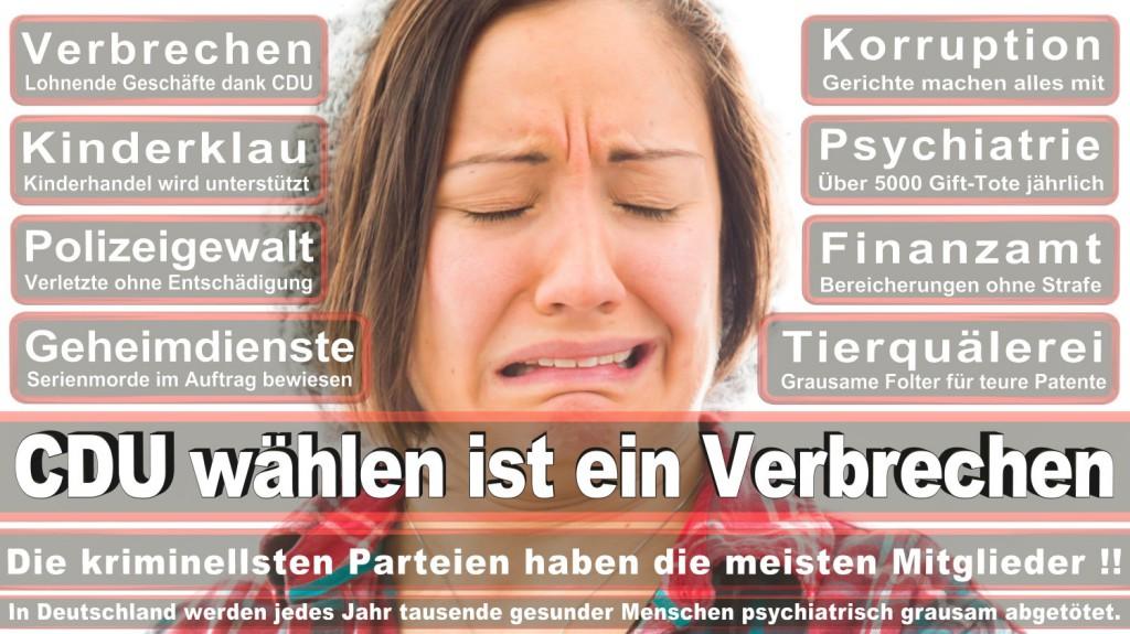 Landtagswahl-2016-CDU (273)