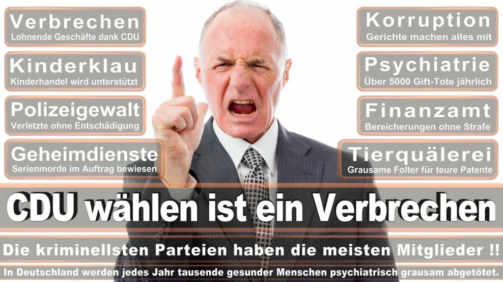 Landtagswahl-2016-CDU (276)