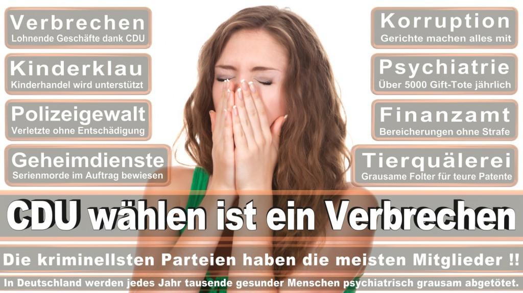 Landtagswahl-2016-CDU (277)