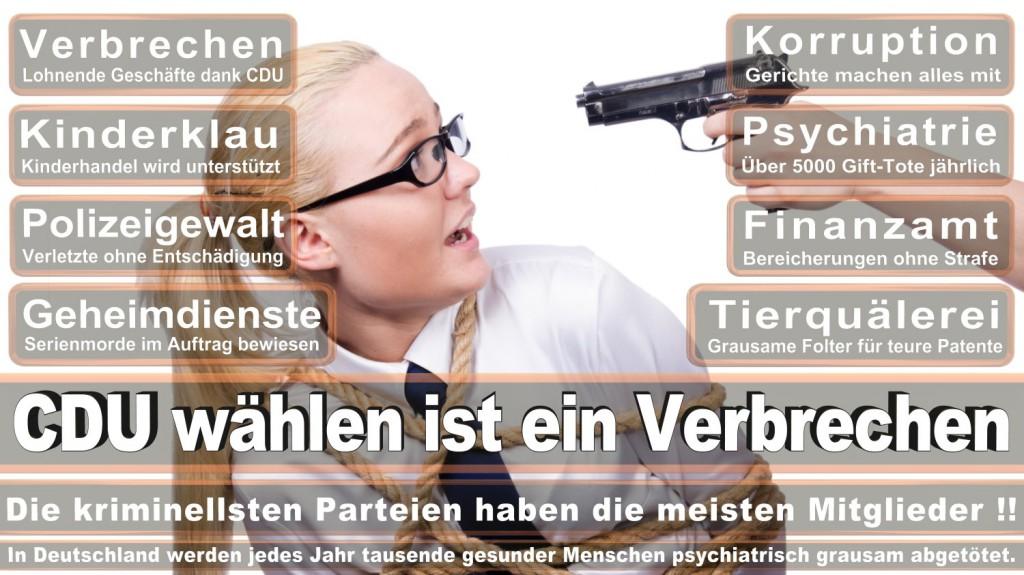 Landtagswahl-2016-CDU (278)