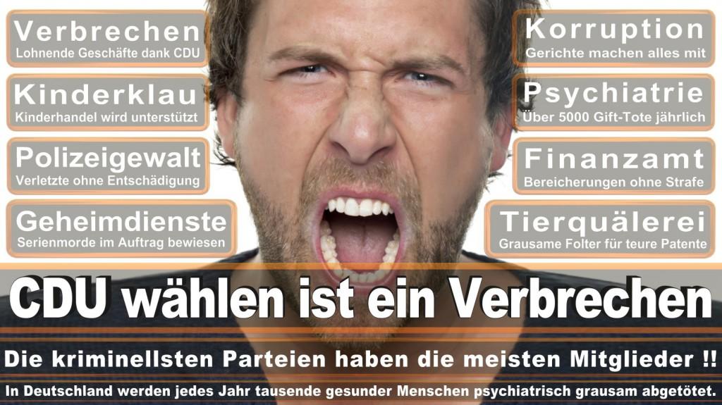 Landtagswahl-2016-CDU (279)