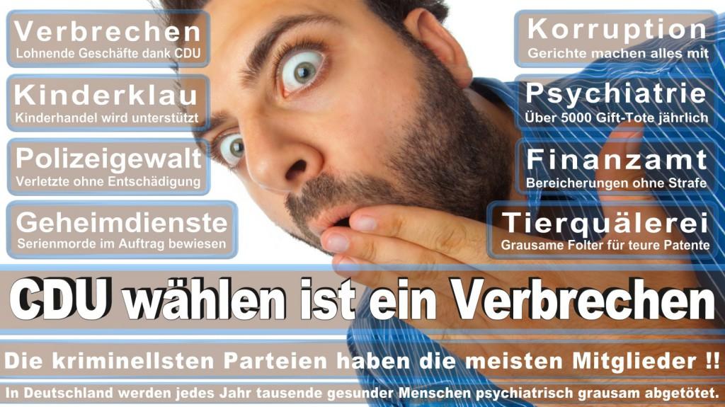Landtagswahl-2016-CDU (282)