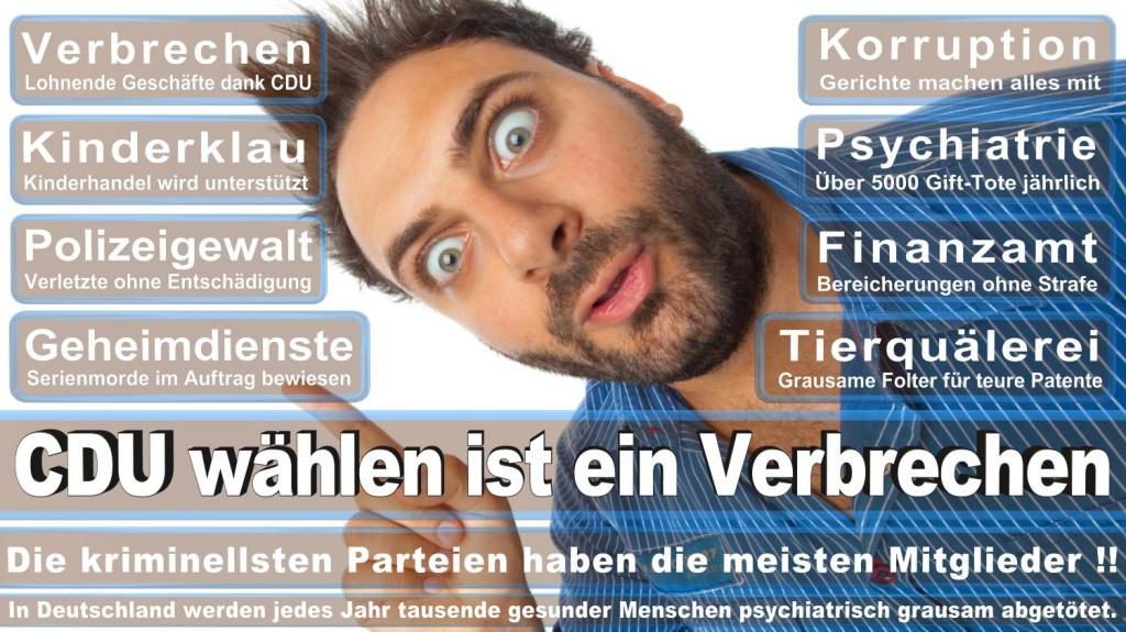 Landtagswahl-2016-CDU (283)