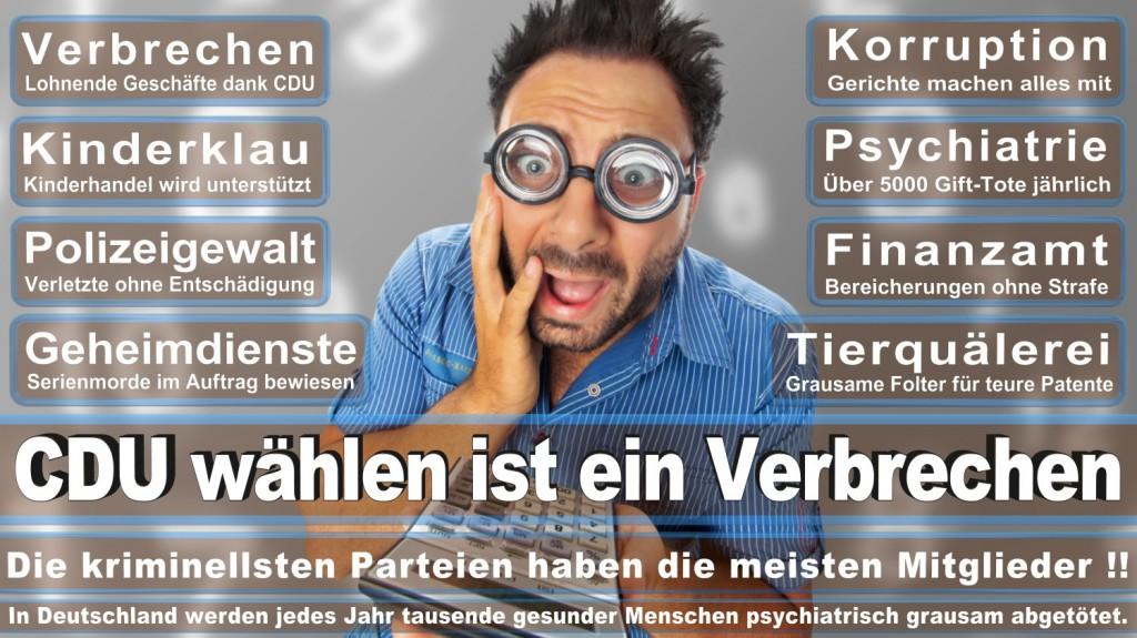 Landtagswahl-2016-CDU (284)