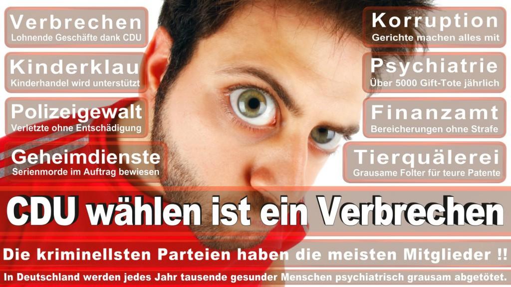 Landtagswahl-2016-CDU (287)