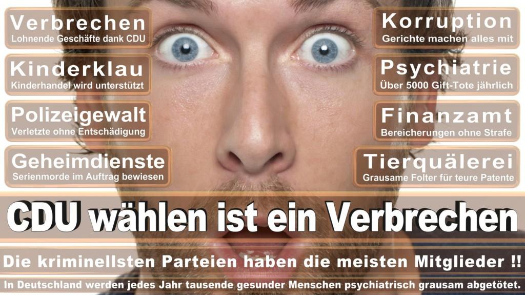 Landtagswahl-2016-CDU (289)