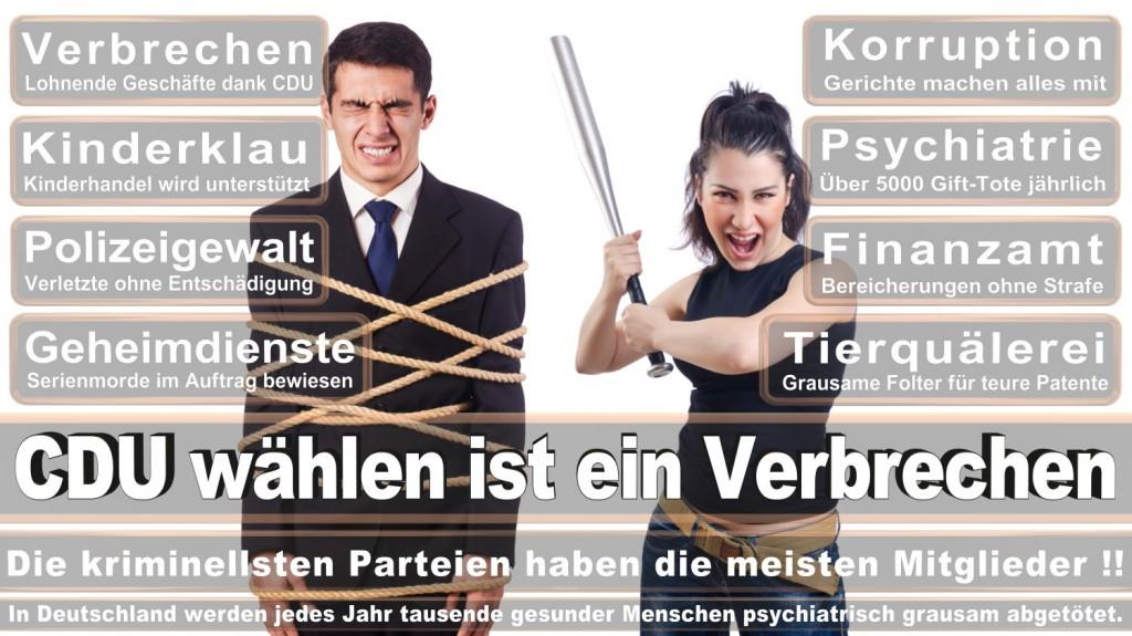 Landtagswahl-2016-CDU (290)