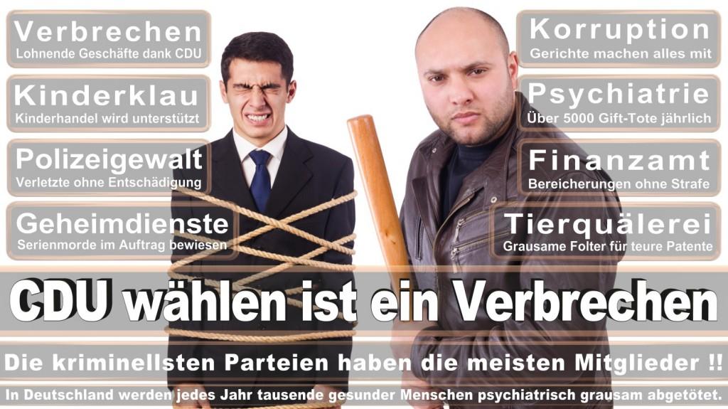 Landtagswahl-2016-CDU (291)