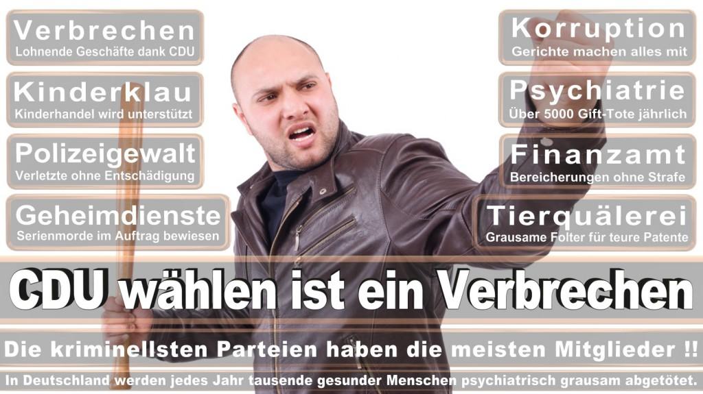 Landtagswahl-2016-CDU (293)