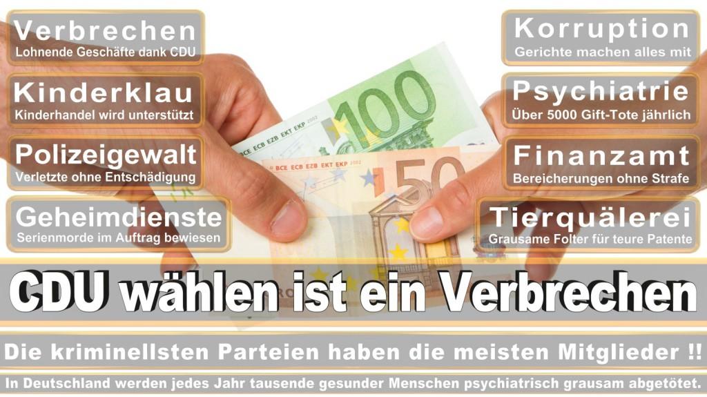 Landtagswahl-2016-CDU (294)