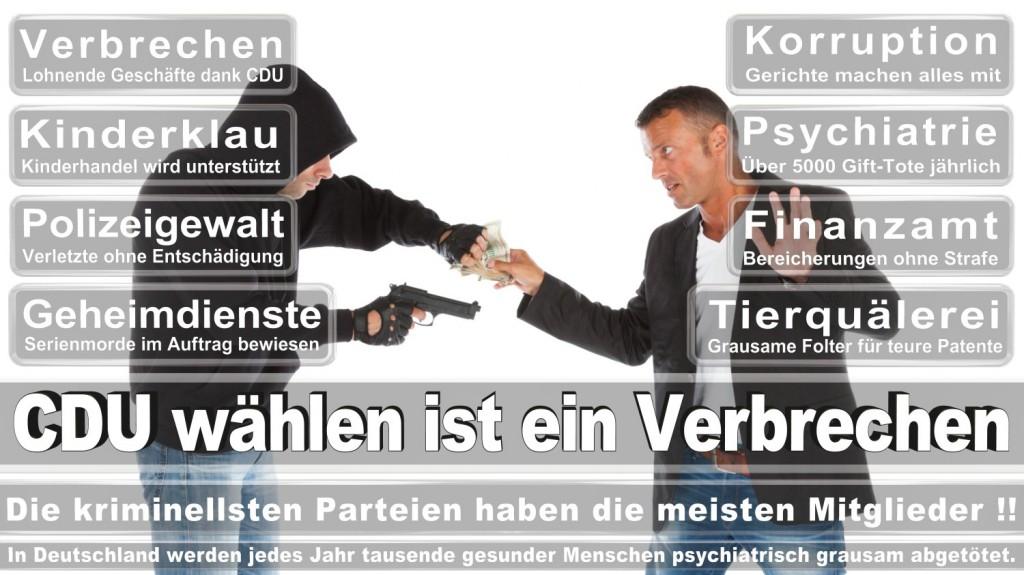 Landtagswahl-2016-CDU (295)