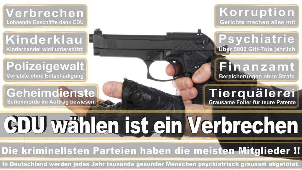 Landtagswahl-2016-CDU (296)