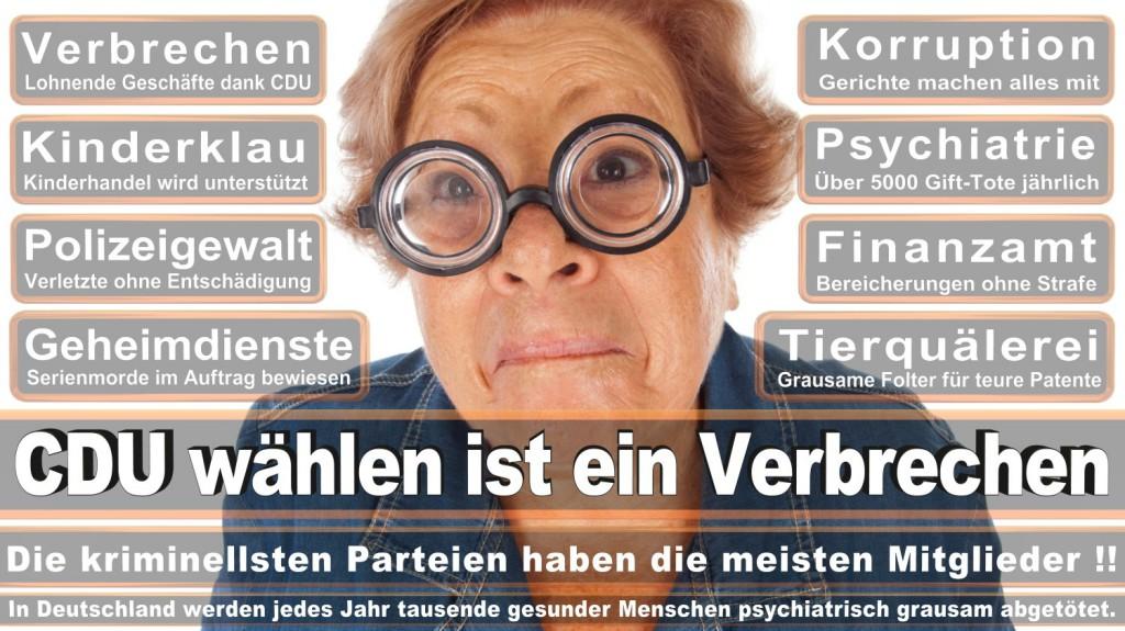 Landtagswahl-2016-CDU (297)