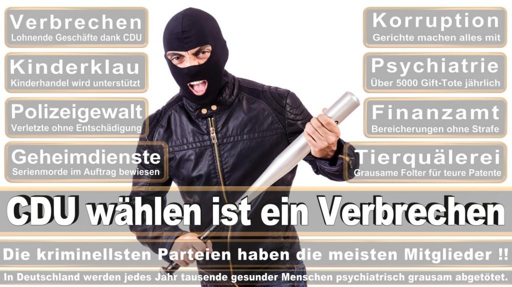 Landtagswahl-2016-CDU (298)