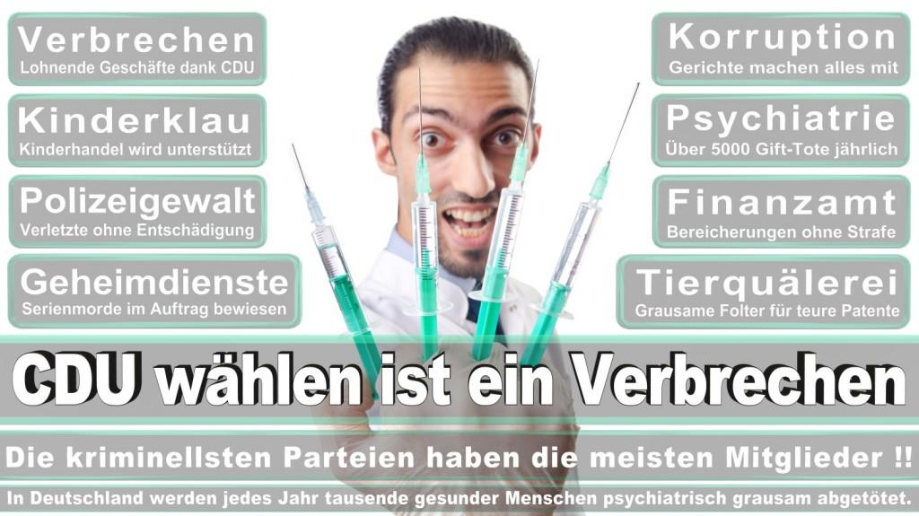 Landtagswahl-2016-CDU (299)