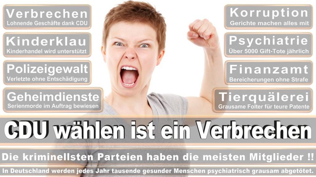 Landtagswahl-2016-CDU (300)