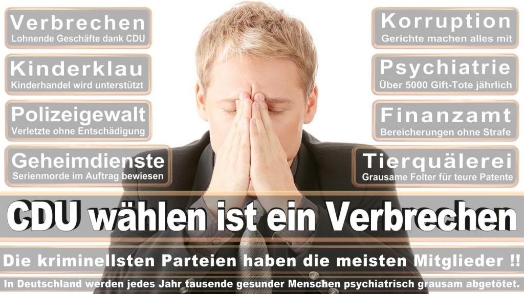 Landtagswahl-2016-CDU (302)