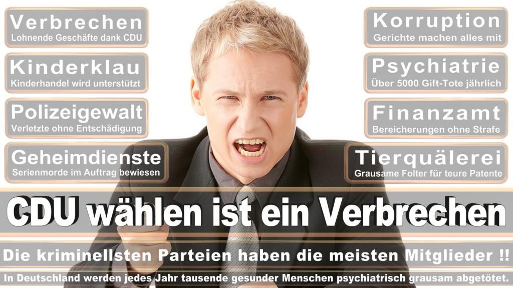 Landtagswahl-2016-CDU (303)